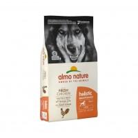 Croquettes pour chien - ALMO NATURE Holistic Large Adult Dog
