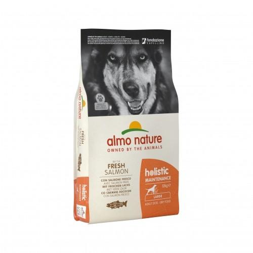 Alimentation pour chien - Almo Nature Holistic Large Adult Dog pour chiens