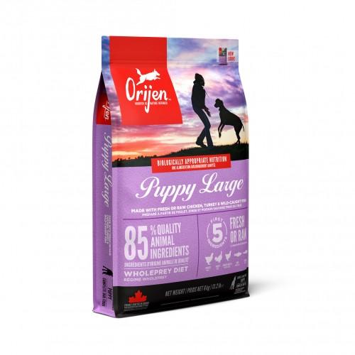 Alimentation pour chien - Orijen Puppy Large pour chiens