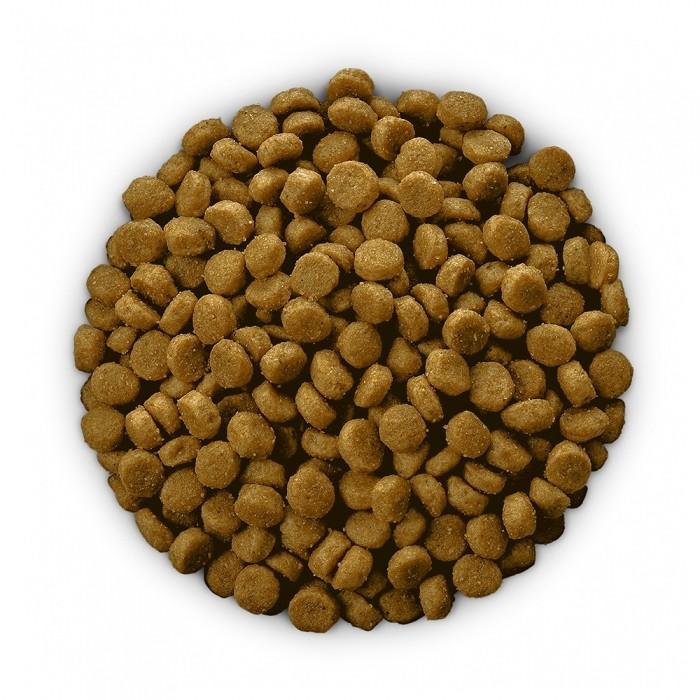 Alimentation pour chien - Hill's Prescription Diet c/d Multicare pour chiens
