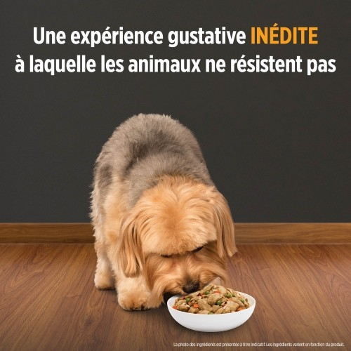 Alimentation pour chien - HILL'S Canine i/d Sensitive pour chiens