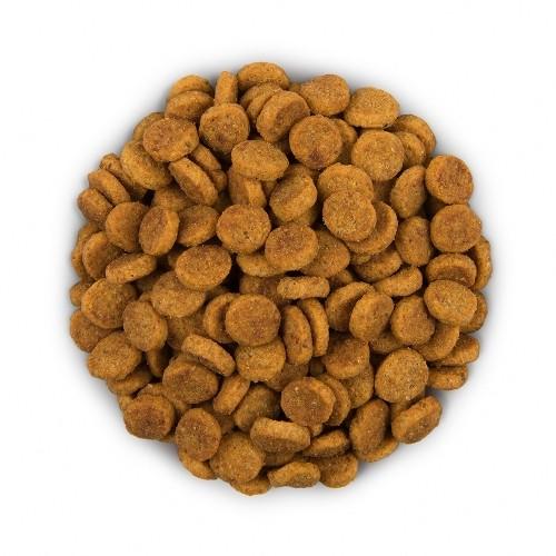 Alimentation pour chien - Hill's Prescription Diet i/d Digestive Care pour chiens