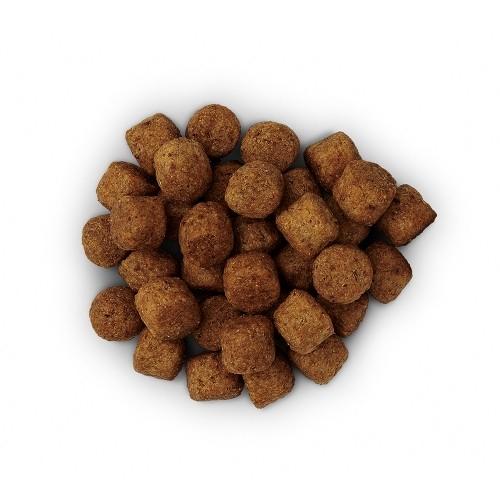 Alimentation pour chien - Hill's Prescription Diet j/d Joint Care pour chiens