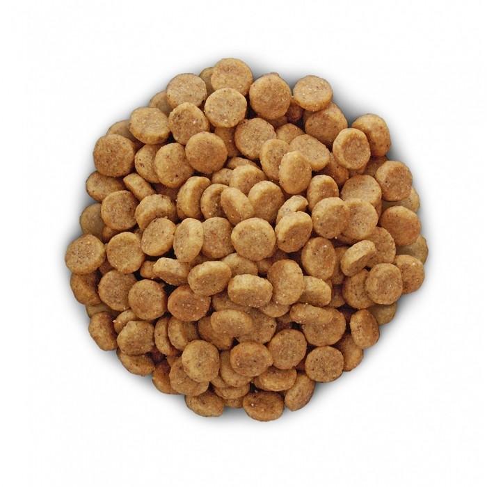 Alimentation pour chien - Hill's Prescription Diet k/d Kidney Care pour chiens