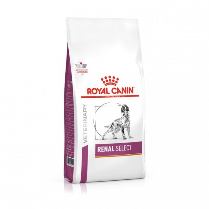 Royal Canin Veterinary Renal Select - Chien-Renal Select