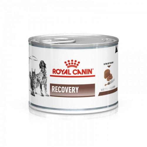Alimentation pour chien - Royal Canin Veterinary Recovery - Pâtee pour chien et chat pour chiens