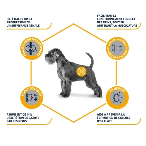 Alimentation pour chien - ADVANCE Veterinary Diets Renal Failure pour chiens