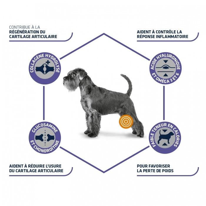Alimentation pour chien - ADVANCE Veterinary Diets Articular Care Reduced Calorie pour chiens
