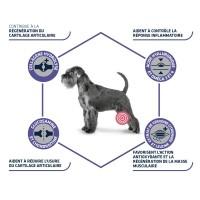 Prescription - ADVANCE Veterinary Diets Articular Care +7 ans Articular Care +7 ans