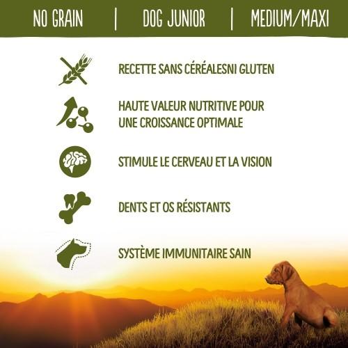 Alimentation pour chien - True Instinct No Grain Medium Maxi Junior pour chiens