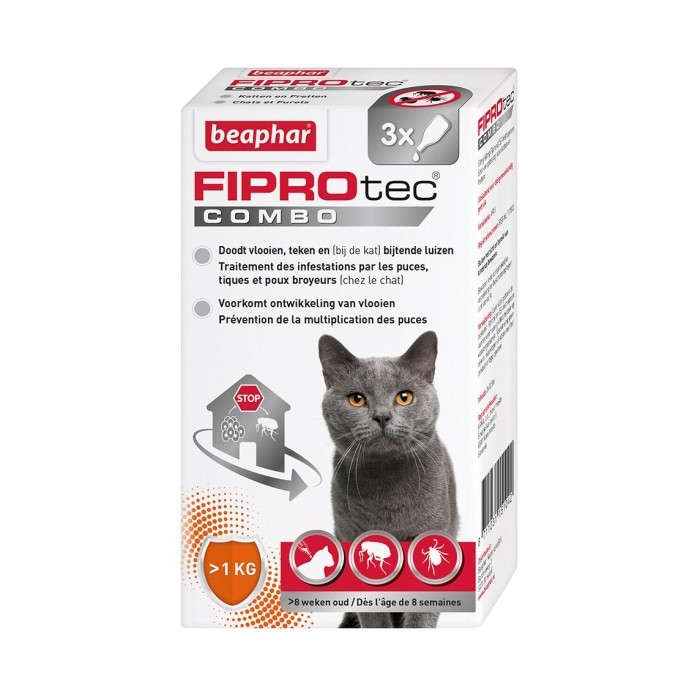 Anti puce chat, anti tique chat - Fiprotec Combo Chat pour chats