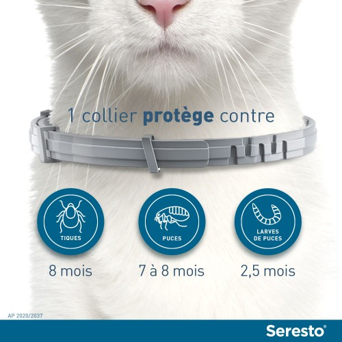 Anti puce chat, anti tique chat - Collier antiparasitaire Seresto chat pour chats