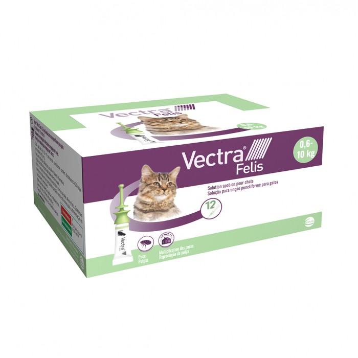 Anti puce chat, anti tique chat -  Pipettes Vectra Felis chat pour chats