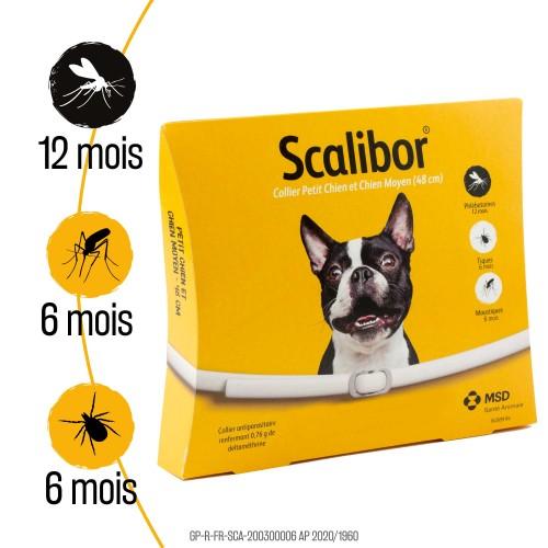 Anti puce chien, anti tique chien - Collier Scalibor chien pour chiens