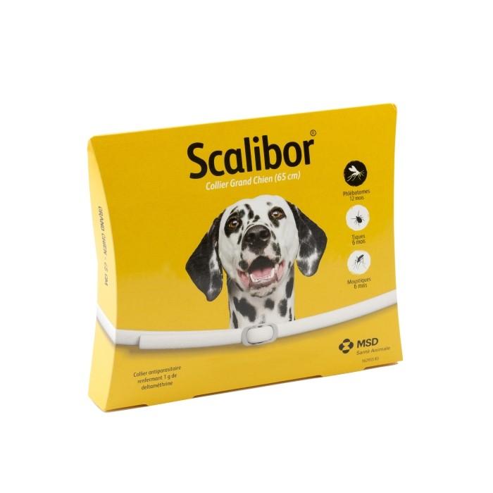 Collier Scalibor chien