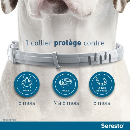 Anti puce chien, anti tique chien - Collier antiparasitaire Seresto chien pour chiens