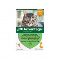 Anti-puces pour chat et lapin - Pipettes Advantage chat Elanco