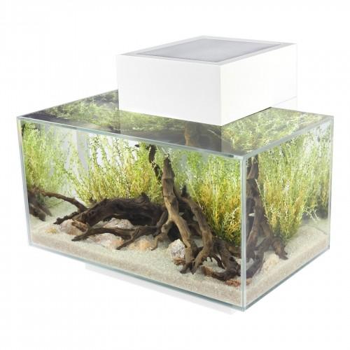 Aquarium - Aquarium Fluval Edge à LED pour poissons