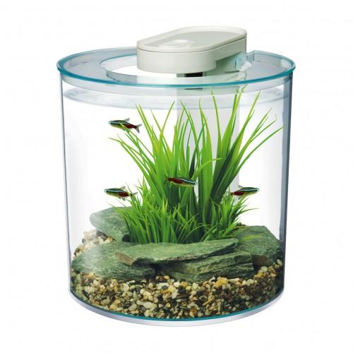 Aquarium - Aquarium Marina 360 ° pour poissons