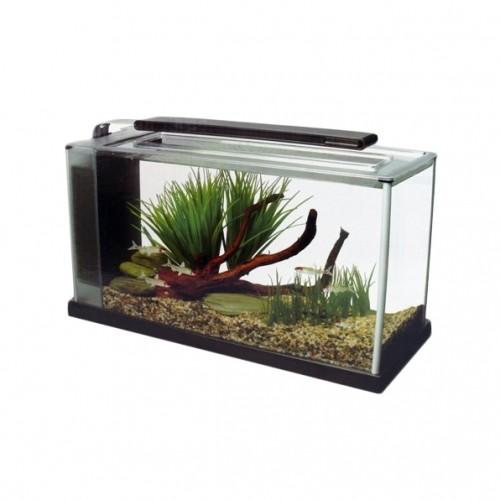 Aquarium - Fluval Spec V  pour poissons