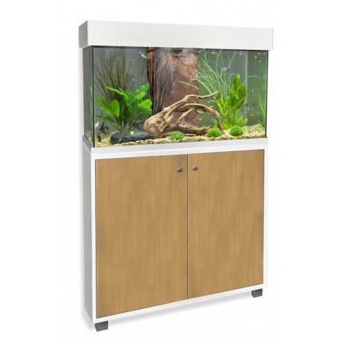 Aquarium et meuble fluval accent aquarium fluval wanimo for Meuble poisson