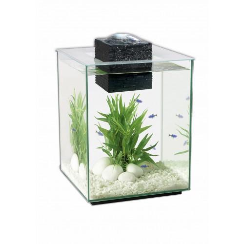 Aquarium - Aquarium Fluval Shui pour poissons