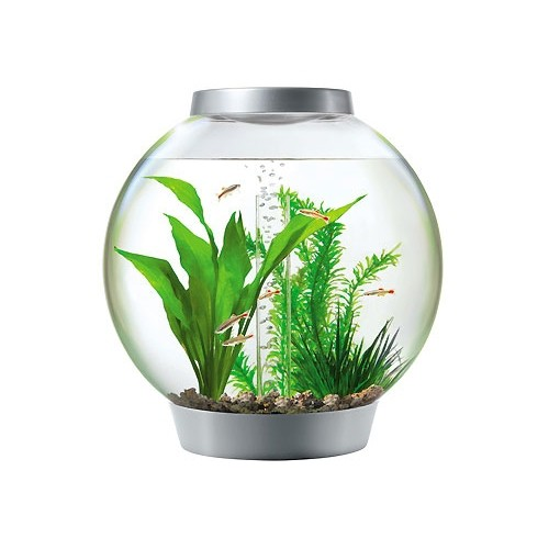 Aquarium - Aquarium Baby biOrb LED  pour poissons