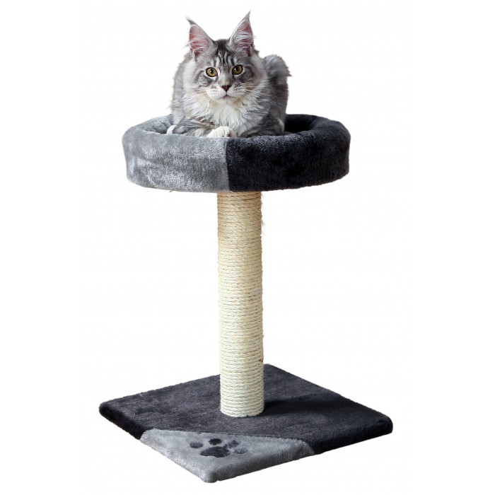 Arbre chat tarifa arbres chat trixie wanimo - Arbre a chat simple ...