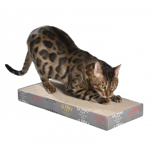 Arbre à chat et griffoir - Griffoir Grifouille pour chats