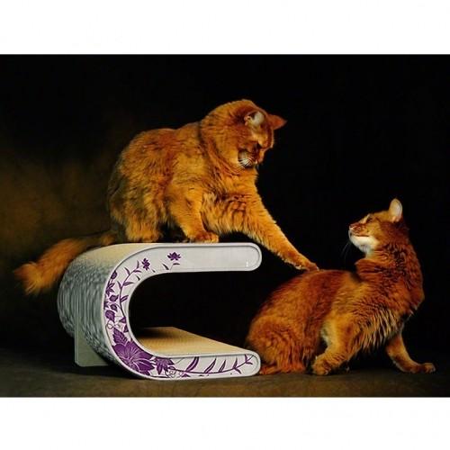 Arbre à chat et griffoir - Griffoir Le Tonneau pour chats
