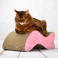 Arbre à chat et griffoir - Griffoir Kabou