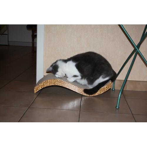 Arbre à chat et griffoir - Griffoirs en carton nouvelle génération pour chats