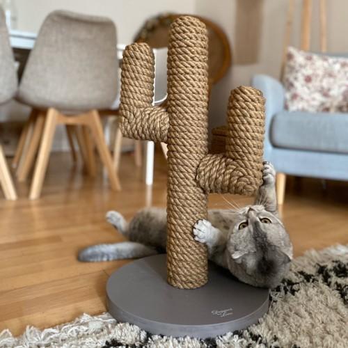 Arbre à chat et griffoir - Griffoir Cactus pour chats