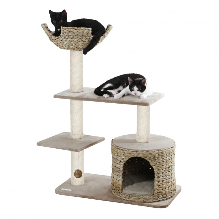 Arbre à chat et griffoir - Arbre à chat Banana Leaf Jade pour chats