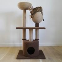 Arbre à chat - Arbre à chat Catwalk Coll Bay Rosewood