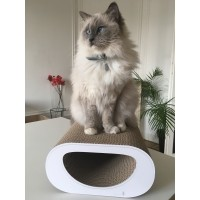 Griffoir pour chat - Griffoir Le Tunnel Cat-on®