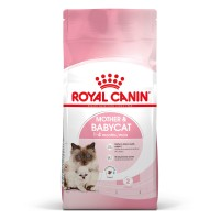 Croquettes pour chat - ROYAL CANIN Mother & BabyCat