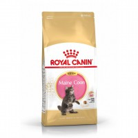 Croquettes pour chat - ROYAL CANIN Breed Nutrition Kitten Maine Coon