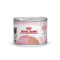 Pâtée en boîte pour chaton - Royal Canin Mother & Babycat Mother & Babycat