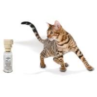Répulsif électronique pour chat et chien - Spray Ssscat Petsafe