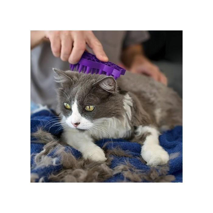 Shampooing et toilettage - Brosse massante Groom Cat  KONG pour chats