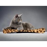 Boutique chaton - Griffoir Junior