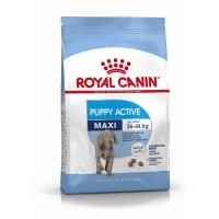 Croquettes pour chien - Royal Canin Maxi Puppy Active Maxi Puppy Active