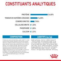Croquettes pour chien - ROYAL CANIN Size Nutrition Giant Puppy