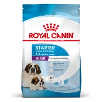 Croquettes pour chien - ROYAL CANIN Size Nutrition Giant Starter