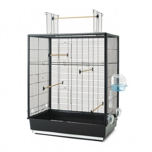 Cage et volière pour oiseau - Cage Primo 60 Open Empire pour oiseaux