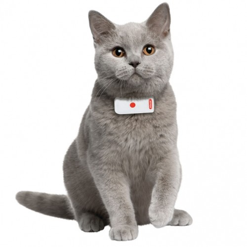 Chatière, sécurité, anti-fugue - Système de localisation Moov pour chats