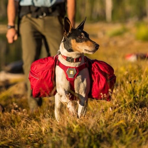 Collier, laisse et harnais - Sac de bât Palisades 2 en 1 pour chiens