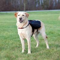 Sac à dos pour chien - Sac à dos pour chien Trixie