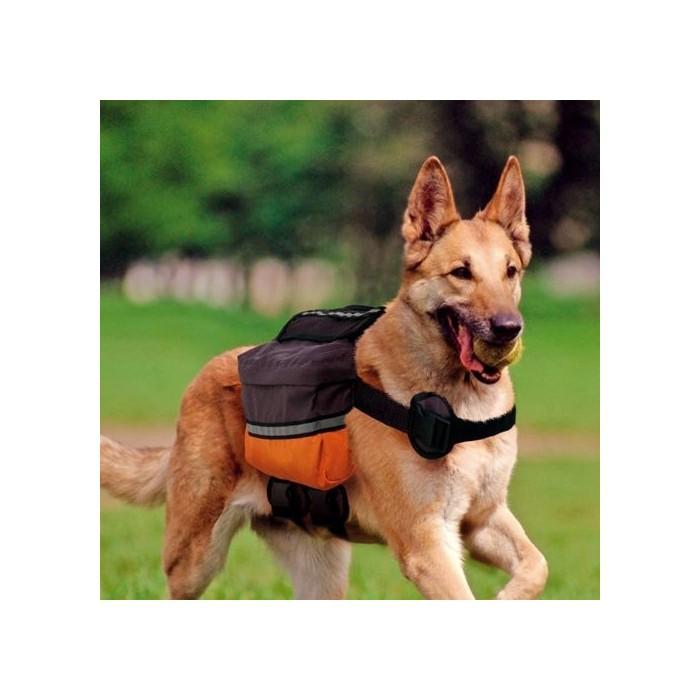 Collier, laisse et harnais - Sac à dos pour chien Dog Scout pour chiens